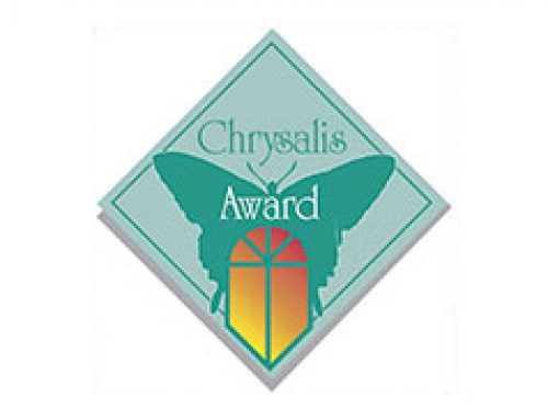 2020 Chrysalis Award – Basement Remodel Over $100,000